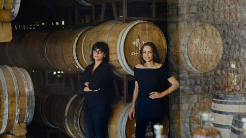 Винодельни из портфеля SimpleWine получили премии Wine Star Awards